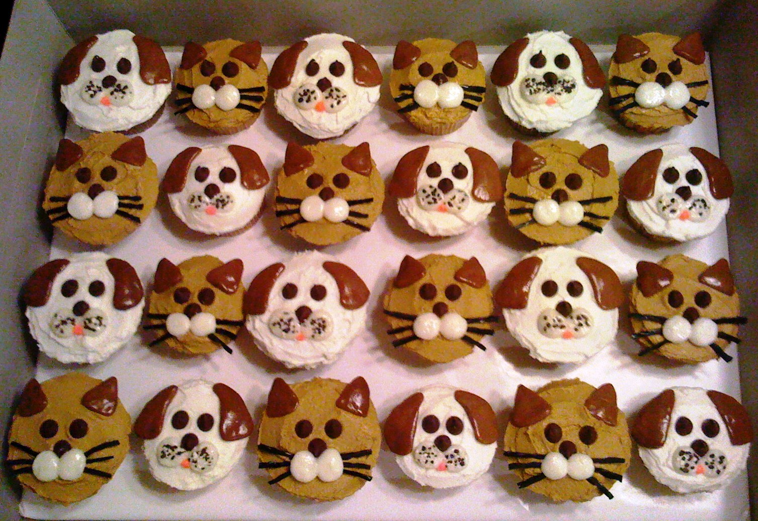 Dog And Cat Themed Cupcakes